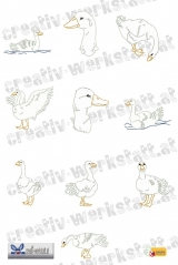 Outline swans