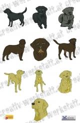 Realistic Labradors