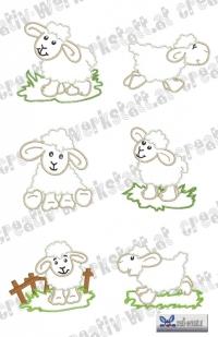 Applikationen Schafe