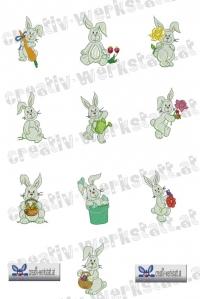 Cute bunny - Hasen
