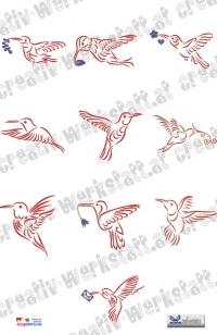 Hummingbirds flight dst