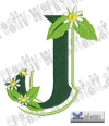 Blumen Alpha J