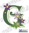Blumen Alpha G