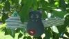 Fledermaus Rudi klein 10 x 10