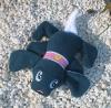 Hund Schnuffel